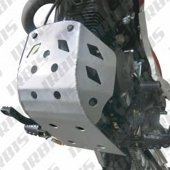 Защита картера Irbis TTR250R
