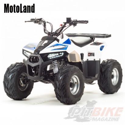 Квадроцикл MOTOLAND 110 EAGLE