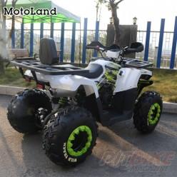 Квадроцикл MOTOLAND WILD TRACK 200