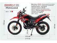 Новинки от MotoLand!