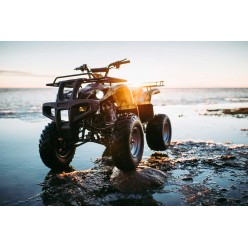 Квадроцикл WELS THUNDER 200
